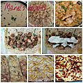 Crêpes gratinées aux poulet, champignons et aux poivrons