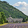 L'abbaye de sénanque et son vieux chêne