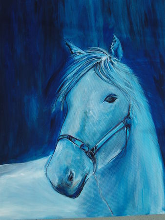 cheval_004