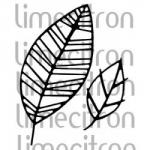 feuilles-250x250