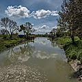 Les Marais près de Rochevort (17) 2