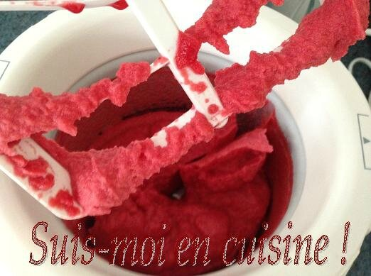 Glace Hibiscus Fraise 16