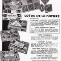 Lotos de la nature