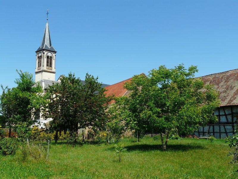 Hindisheim__3_