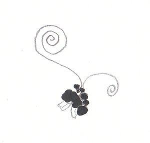 grainesnoires