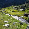 Ruisseau dans le vallon Estaragne