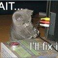 Repair-cat