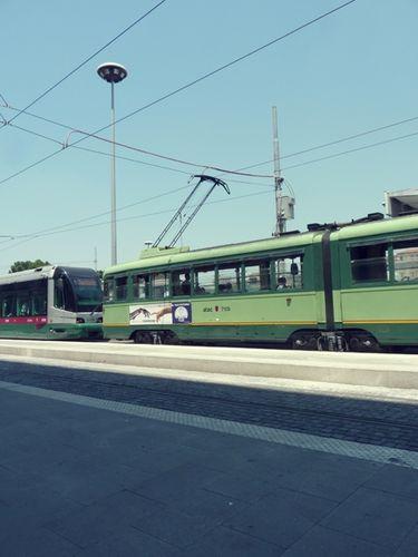 Rome - juillet 2010