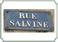salvine_VIDE