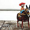 Ouverture de la boutique en ligne my red poppy