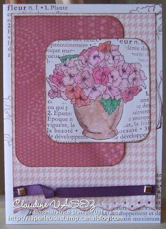merveilles_en_fleurs_rose