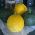 COURGETTES 20