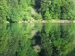 Lac_des_perches_007