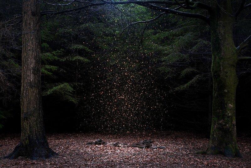 Stars-14