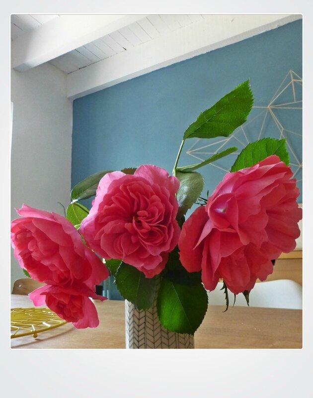 roses2017