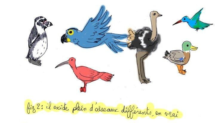 parc-oiseau01-2-1
