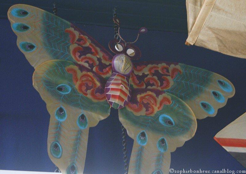 Préfailles cerf volant papillon