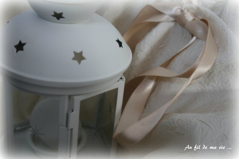 Robe princesse Peau d'ane ICdF Home made06