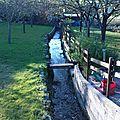 Le ruisseau fontaine-argent