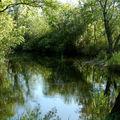 Calme etait la nature...