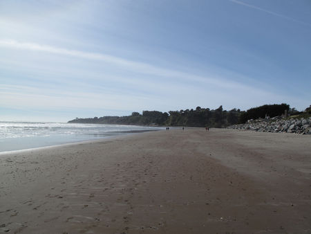 20100314_stiltonbeach2