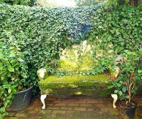 ivy-bench-london-garden