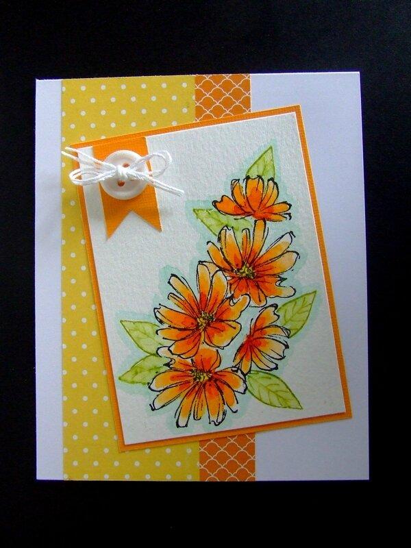 carte cardlift février 006