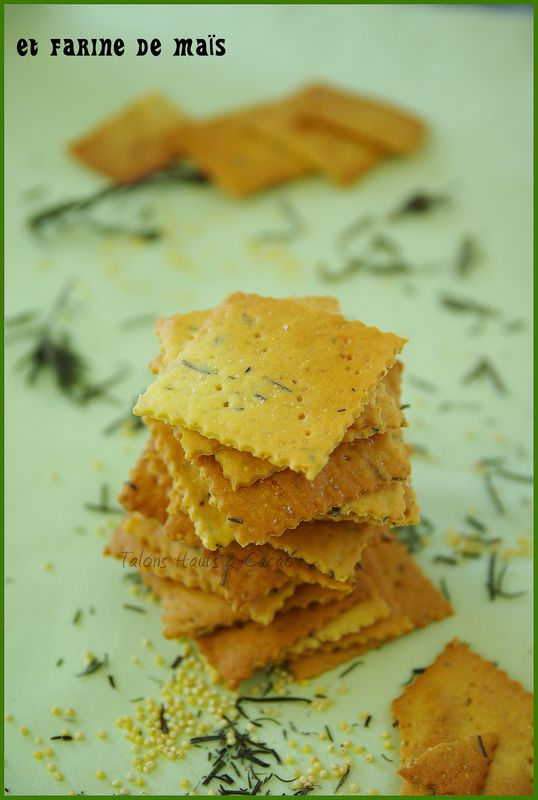 crackers4_copie