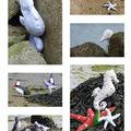 2010 - mars. animaux marins Tilda