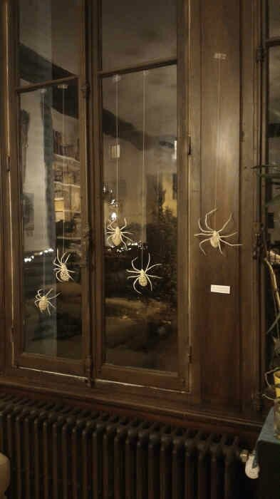Spiders by Mon Souk