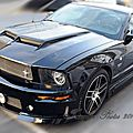 Ford MUSTANG ASC DOMINATOR - GT