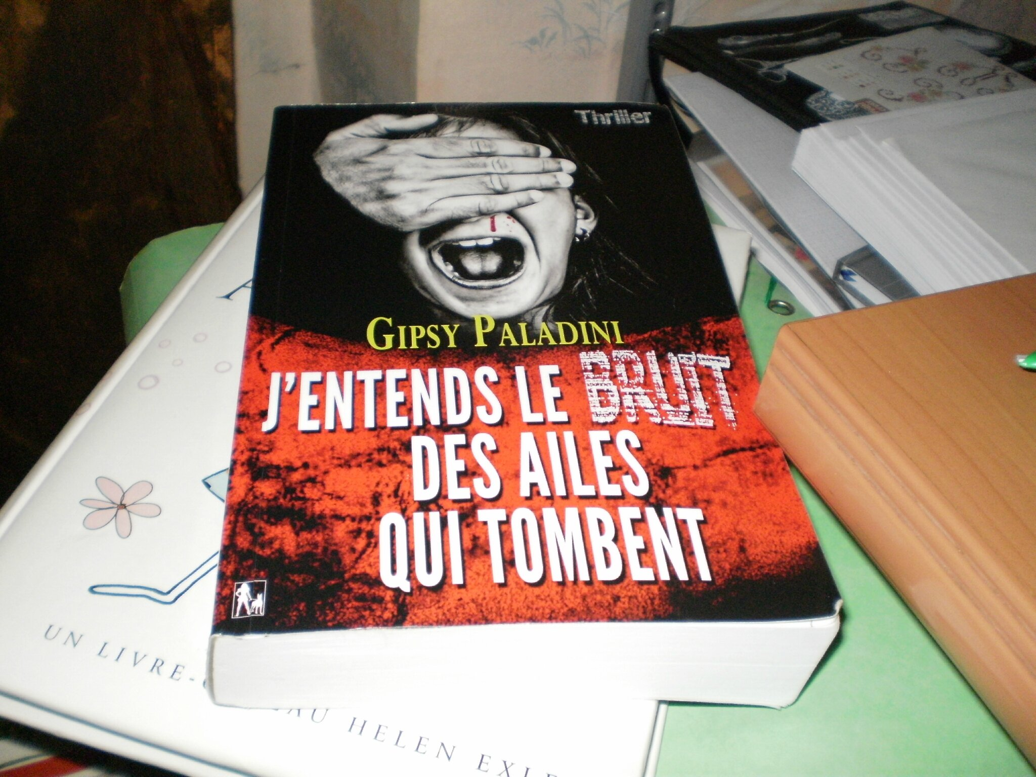 lecture : Le bruit des ailes qui tombent : Gipsy Paladini