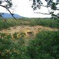 La forêt de ferreyres