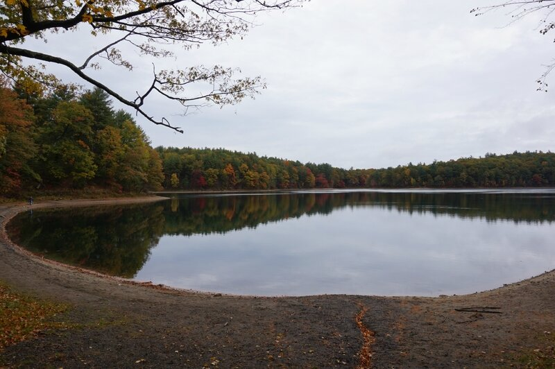 Walden Pond (21)