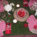 table picnic 058