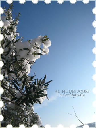 Soleil_apr_s_la_neige