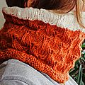 Peacock Cowl de Pickles