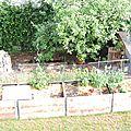 Dans mon jardin #12