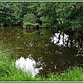 Lac 2906158