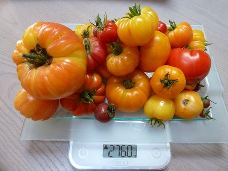 21-les tomates du jour (1)