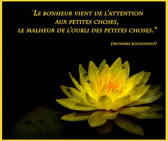 Citation Bouddhiste Revivre Org