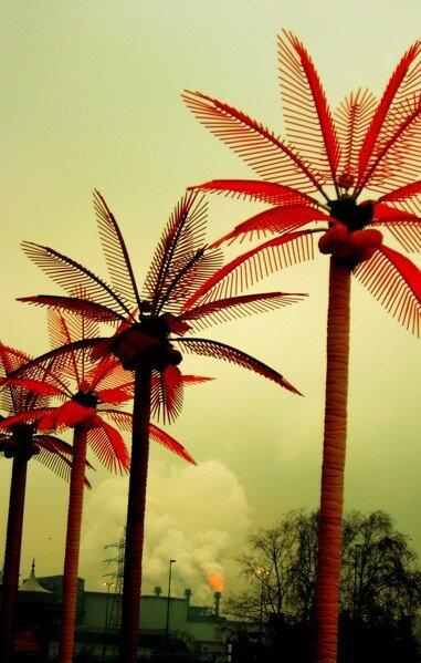 palmsAndPollution