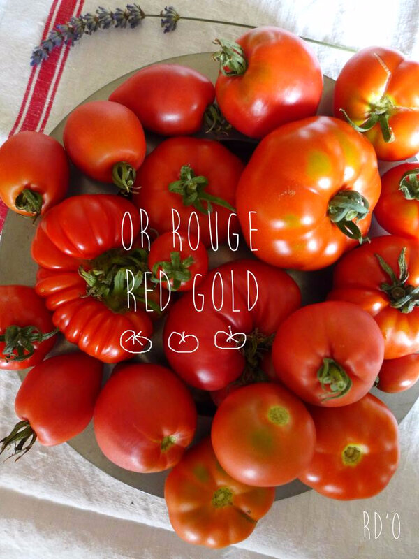 or-rouge-red-gold-blog-2017