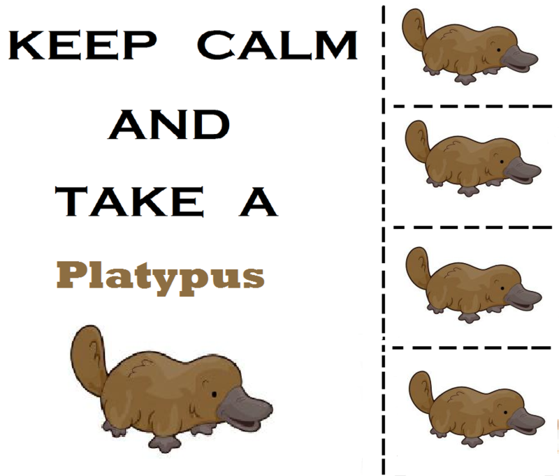 keep_calm_and_take_a_platypus_by_stupidpoptart-d564ci5