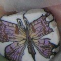 Canne papillon