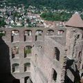 chateau wertheim 2