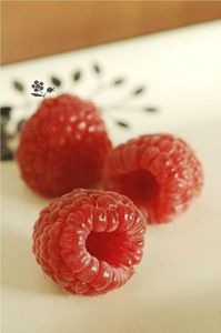 Framboises du jardin_4d
