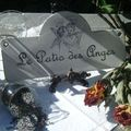 lave le patio des anges