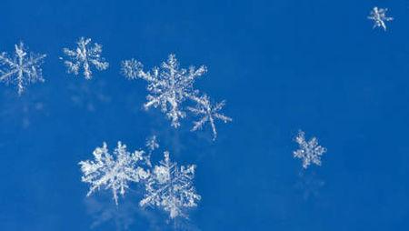 _toiles_de_neige