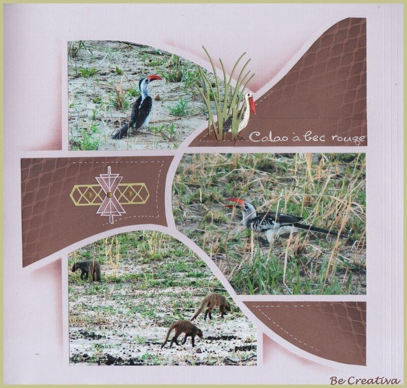 OiseauxTarangireVersoDoublePage